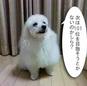 1022KC360040.jpg