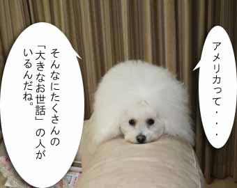 20081108IMG_9790.jpg