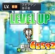 11・25日ー茶子69Lv