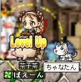 12・21日ー茶子のうり坊レベルアップ