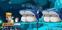 2月15日ーサメ&オハゼ2