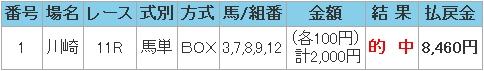 2009.01.01川崎11R.JPG