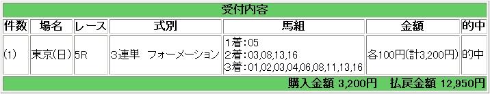 2009.05.03東京5R万馬券.JPG