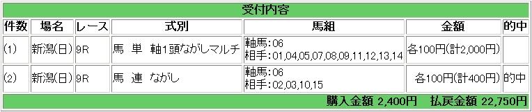 2009.05.10新潟9R.JPG