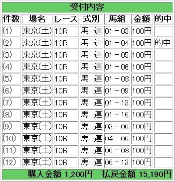 2009.05.16東京10R.JPG