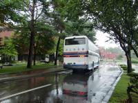 バスで大樹へ