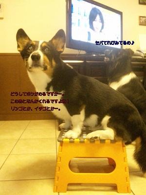 セノピー790円