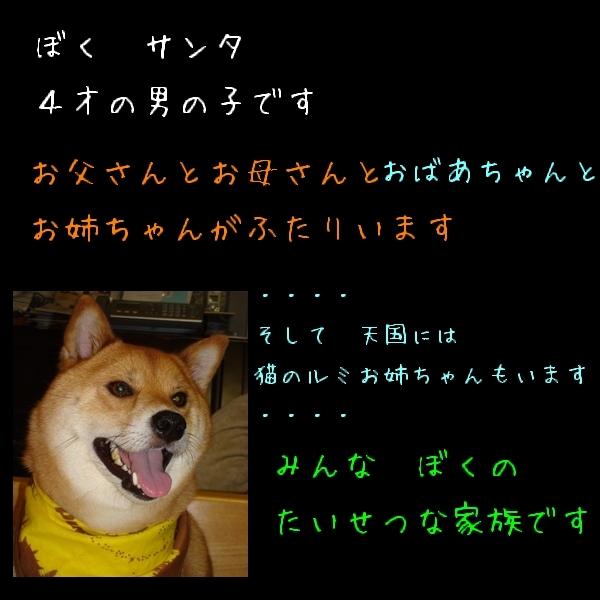 アルバム黒