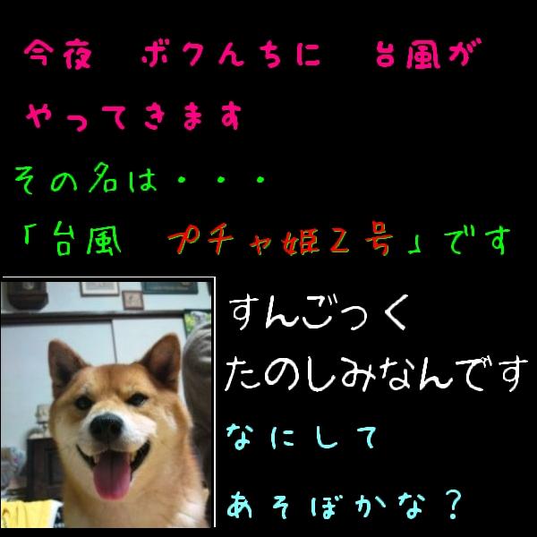 アルバム黒2