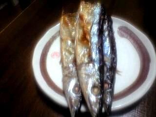 秋刀魚(その1)