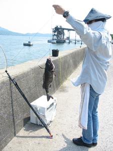 kurodai2008527-2.jpg