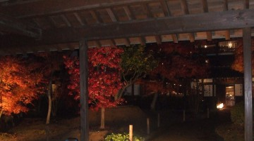 中庭ライトアップ2