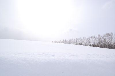 20080219biei4.jpg