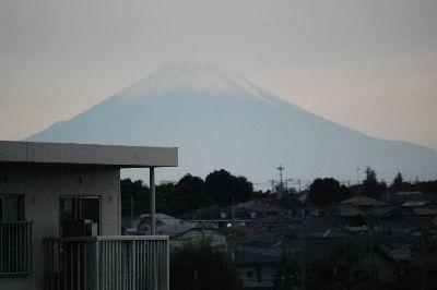 20081026sasuke8.jpg