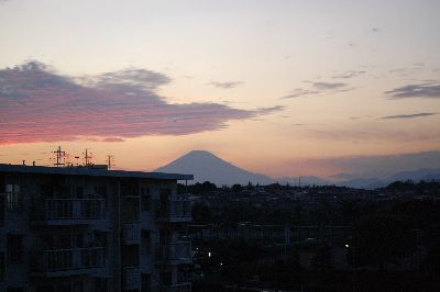 20081029fuji.jpg