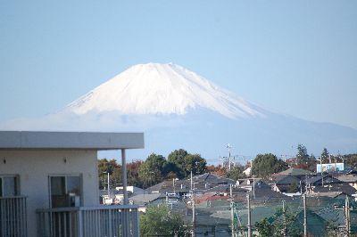 20081113fuji.jpg