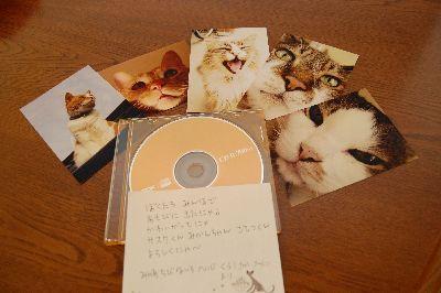 20081113kyokosan.jpg