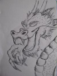 zucca_dragon05.jpg