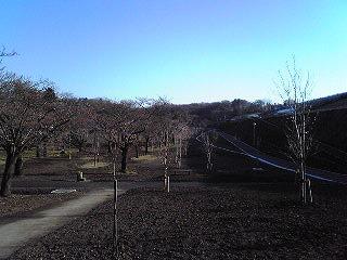 狭山公園リニューアル1