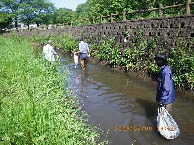 北川水辺クラブの定期清掃