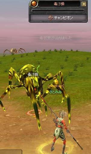 蜘蛛チャンプ