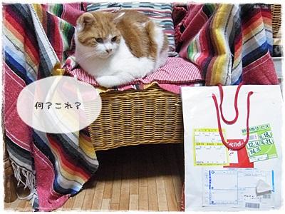 sayomaru3-300.jpg