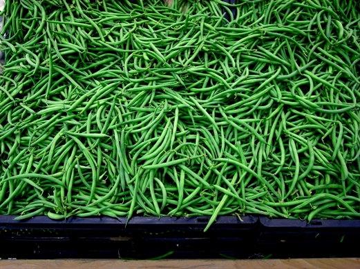 インゲン豆いっぱい