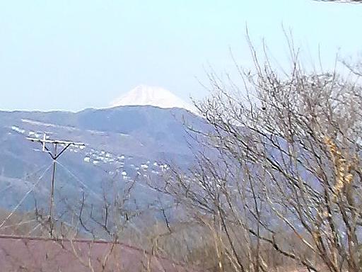 伊豆高原3-1