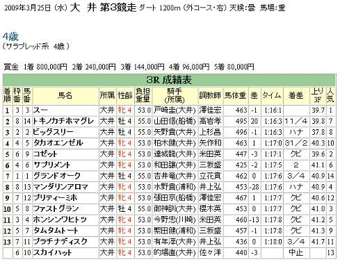 2009年3月25日 (水) 大井第3競走