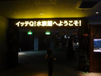 201112252.jpg