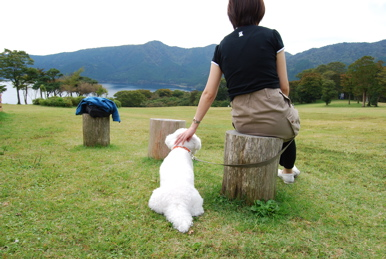 DSC_ashinoko.jpg