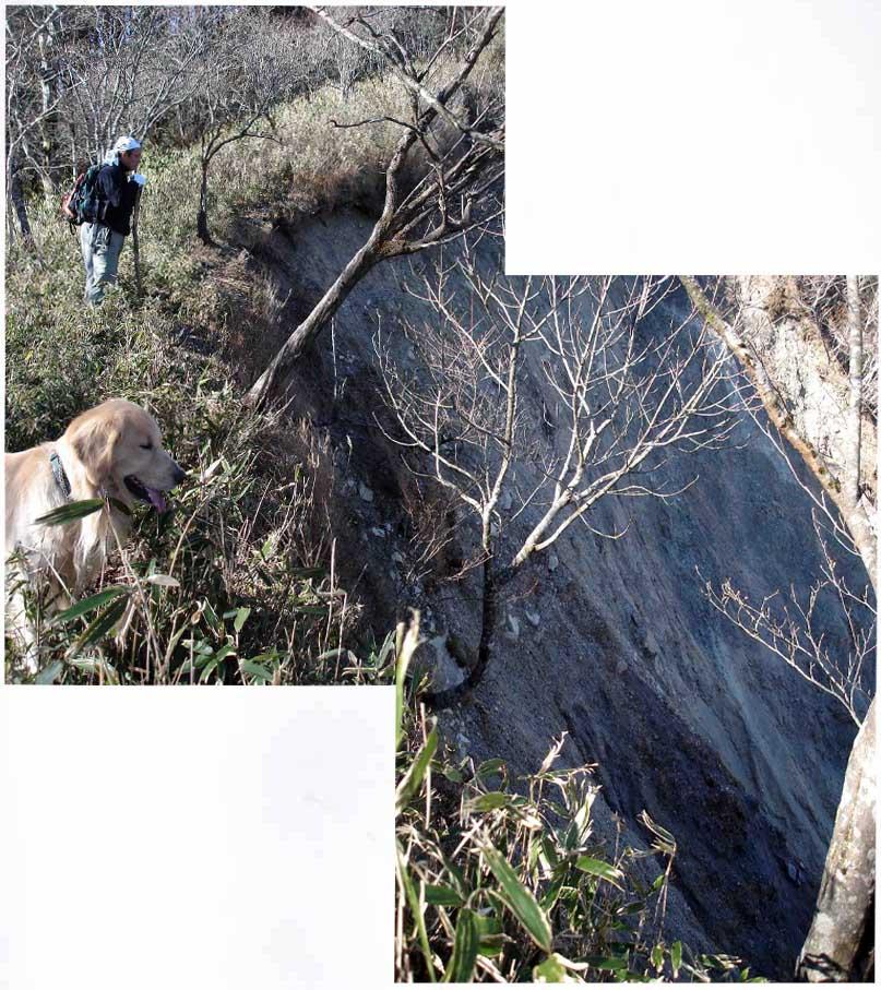 2007年11月22日 八紘嶺への道(崩落谷)