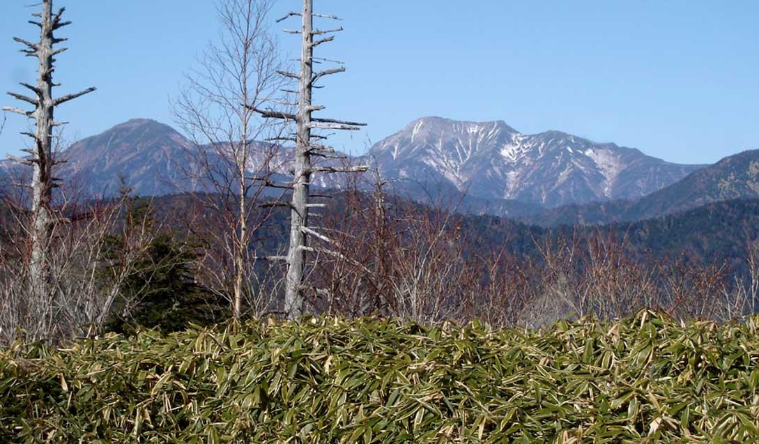山伏山頂からの上河内・聖岳