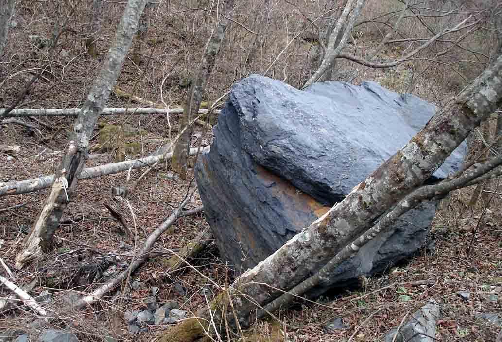 大谷崩れ下部に達した巨岩