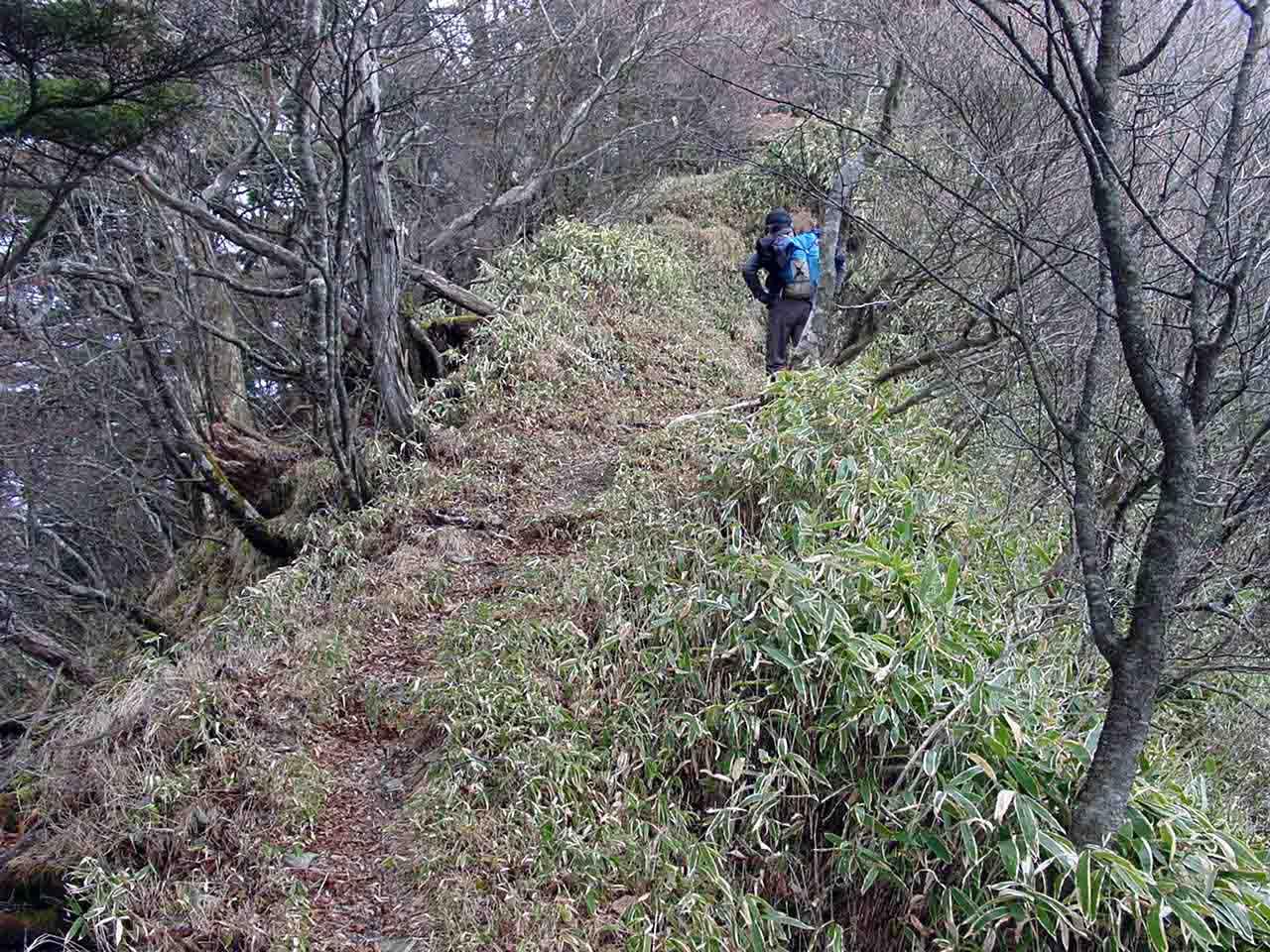 大谷崩八紘嶺捜索 045 八紘嶺への登り
