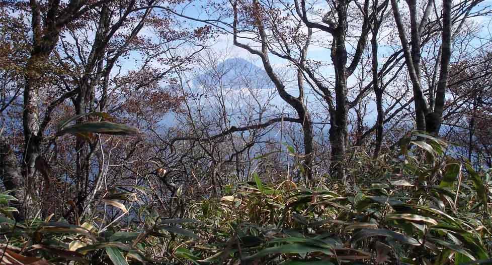 DSC01499 稜線から富士