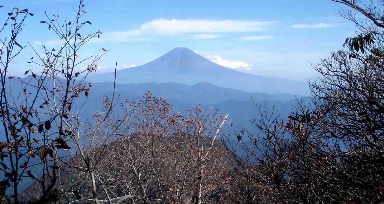 DSC01559 バラの段からの富士