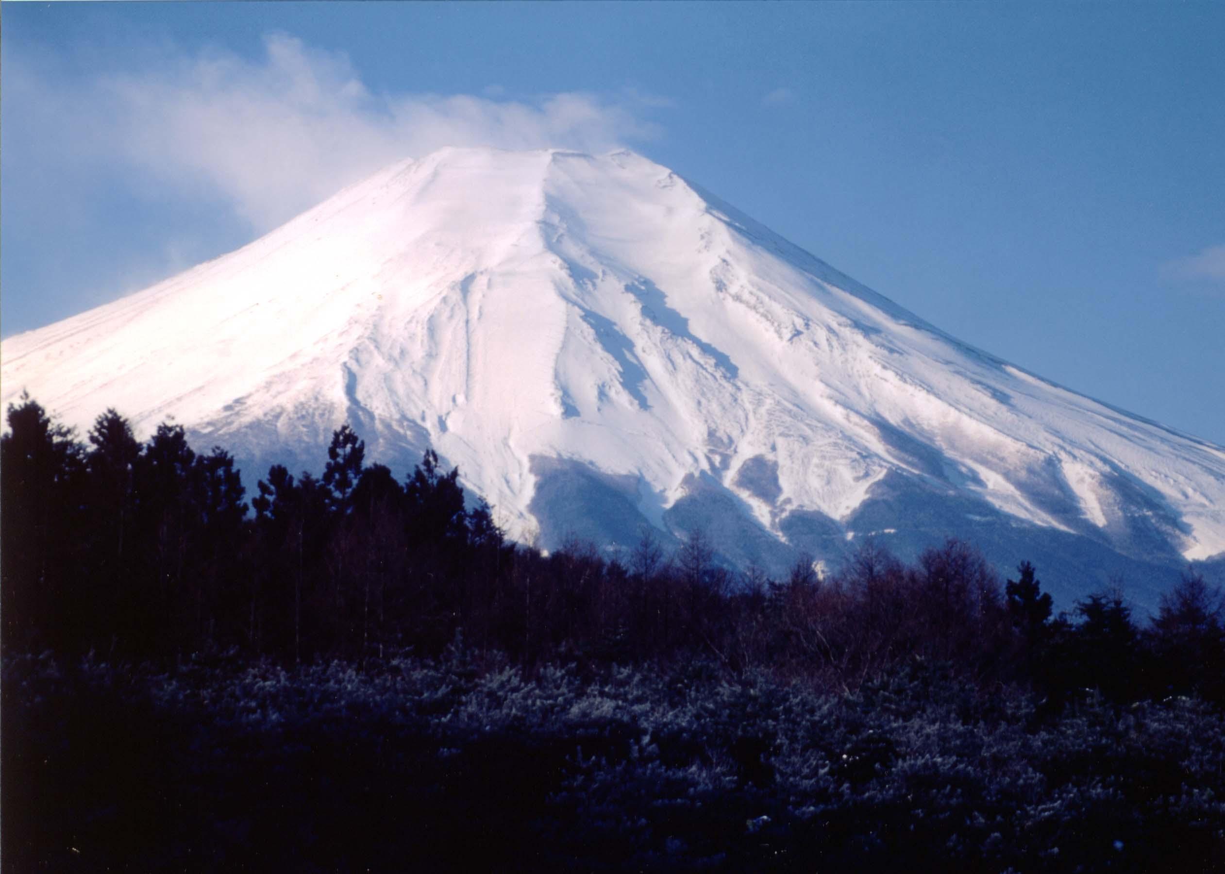 冬富士(忍野村)