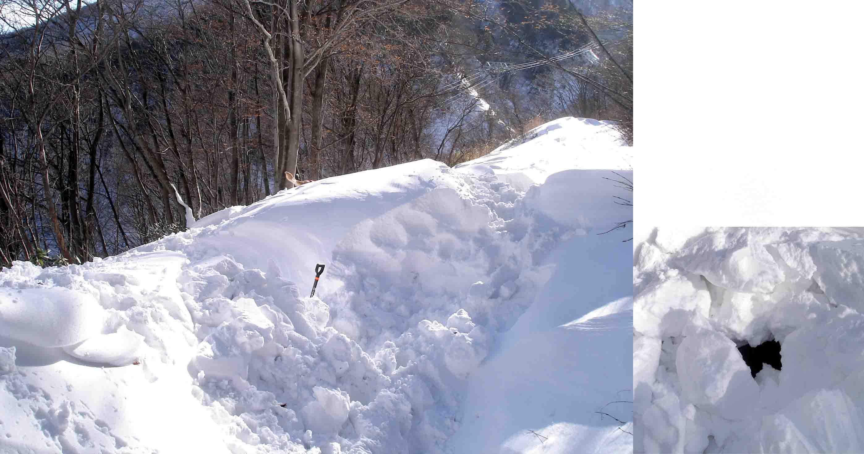 雪中捜索Ⅲ 見えない遭難者の設定