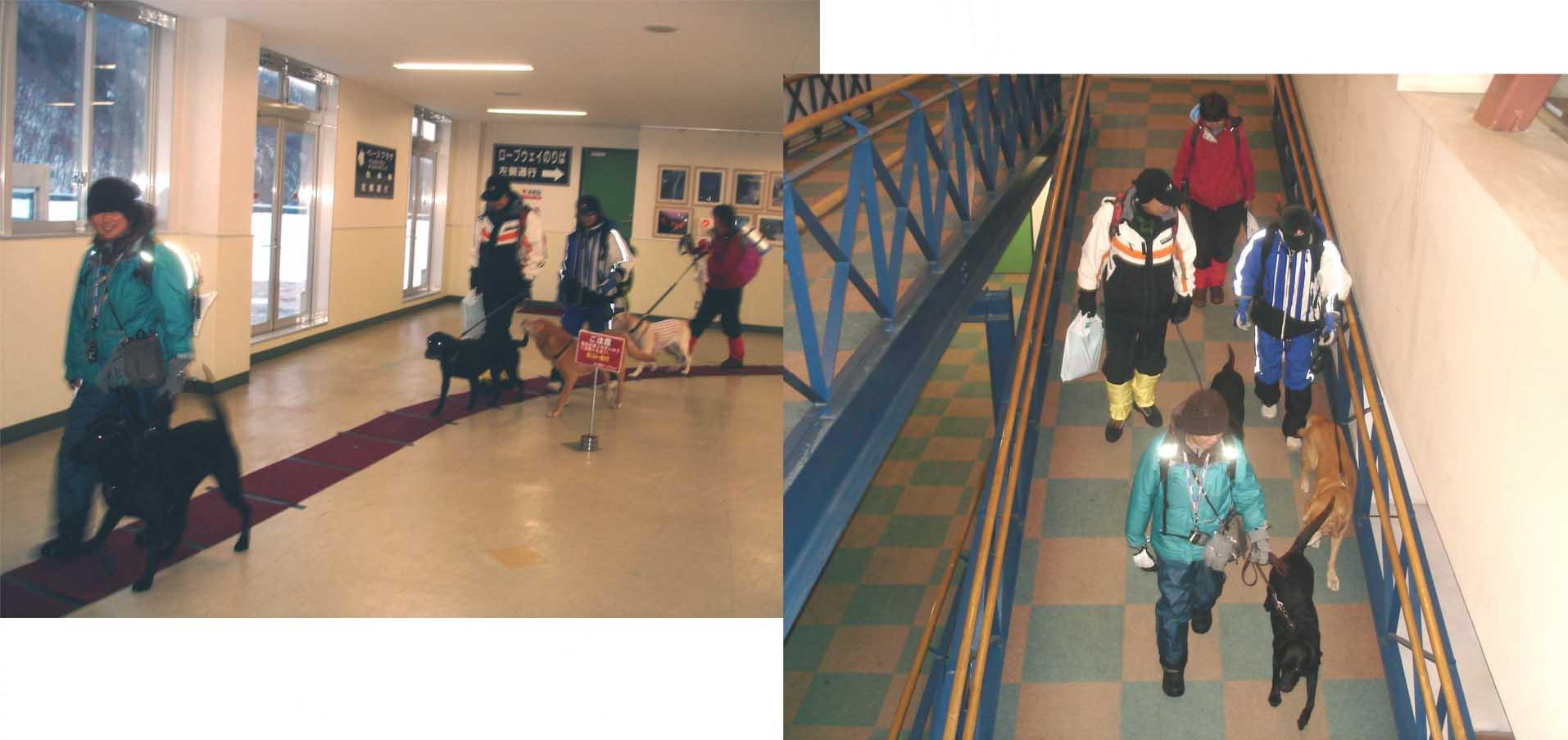 ロープウェイ駅回廊