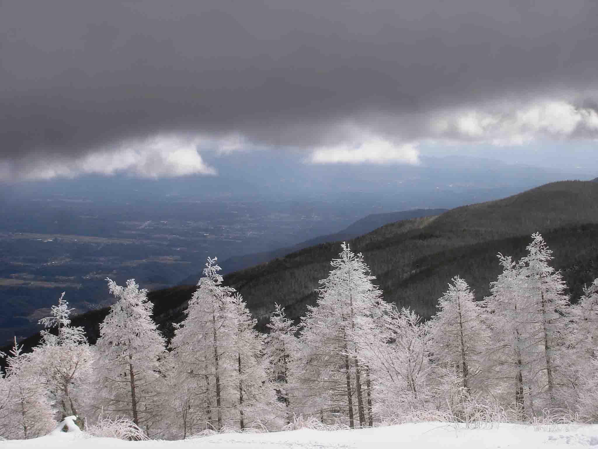 ホワイトツリーと暗雲