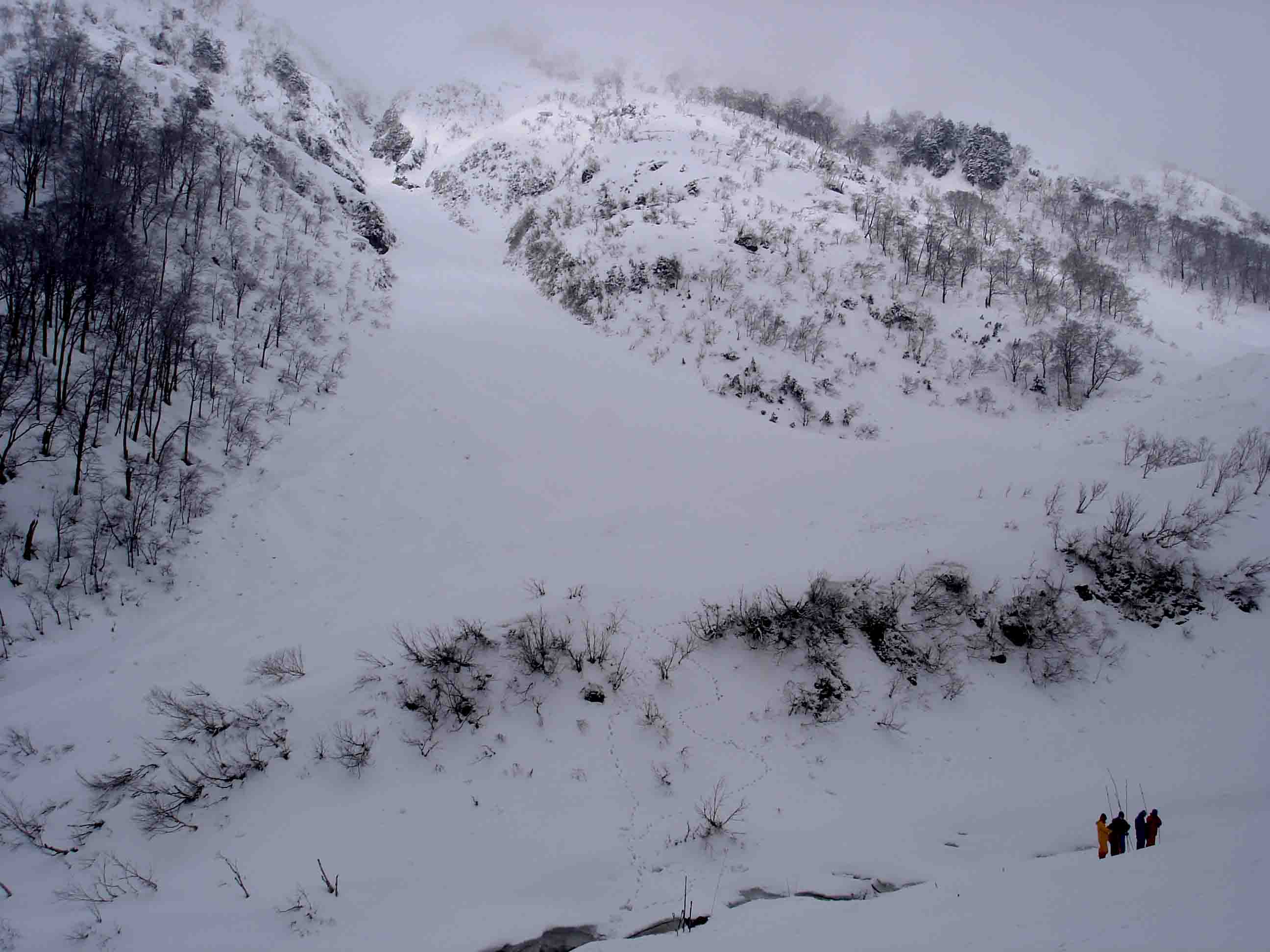DSC08997 雪崩現場全体像
