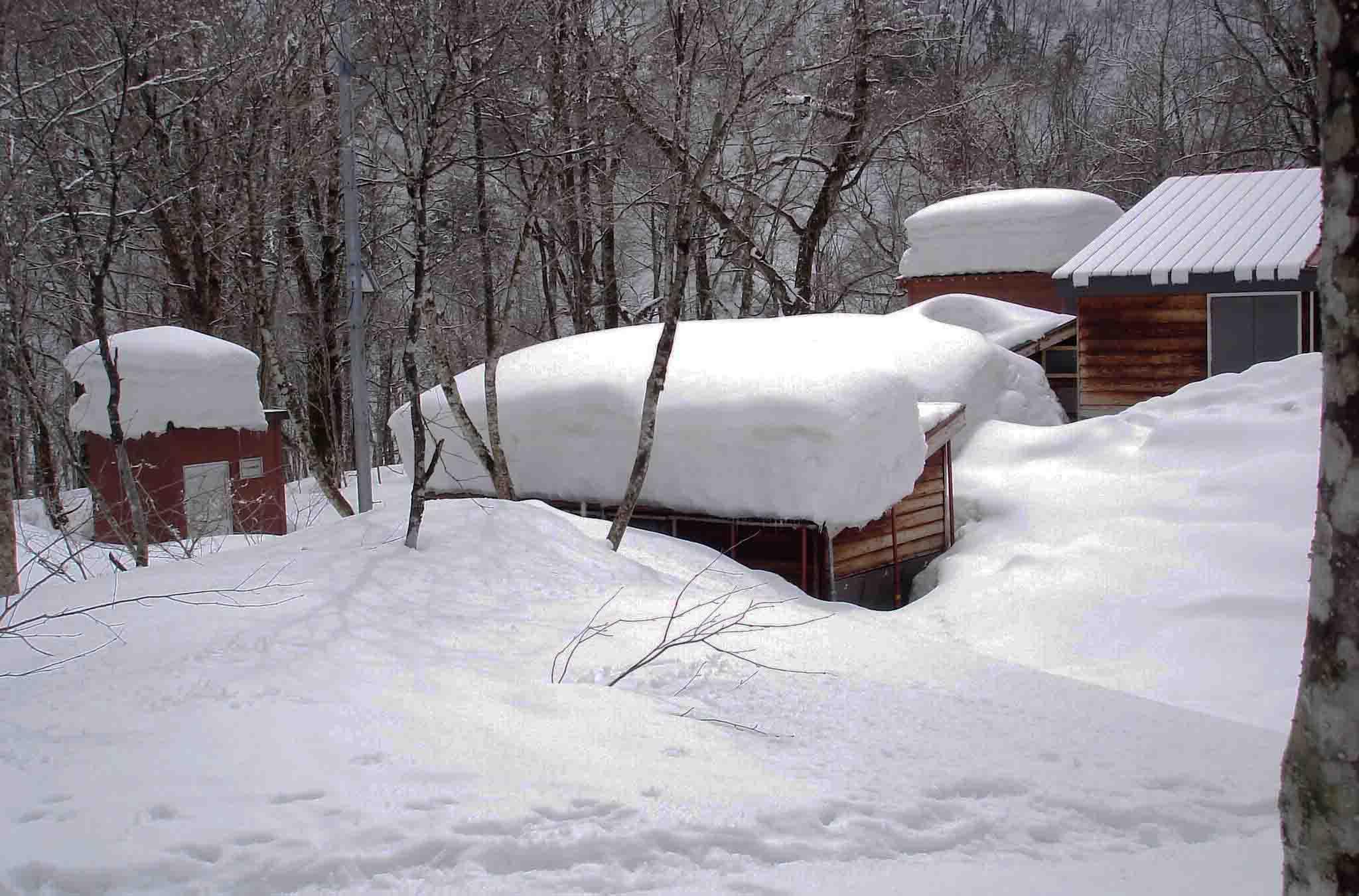 DSC09064 ワサビ小屋周辺の残雪