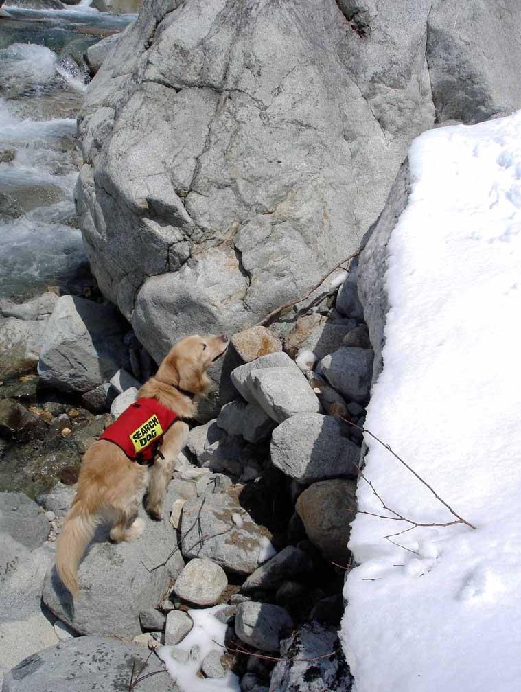岩の周辺川床を探る
