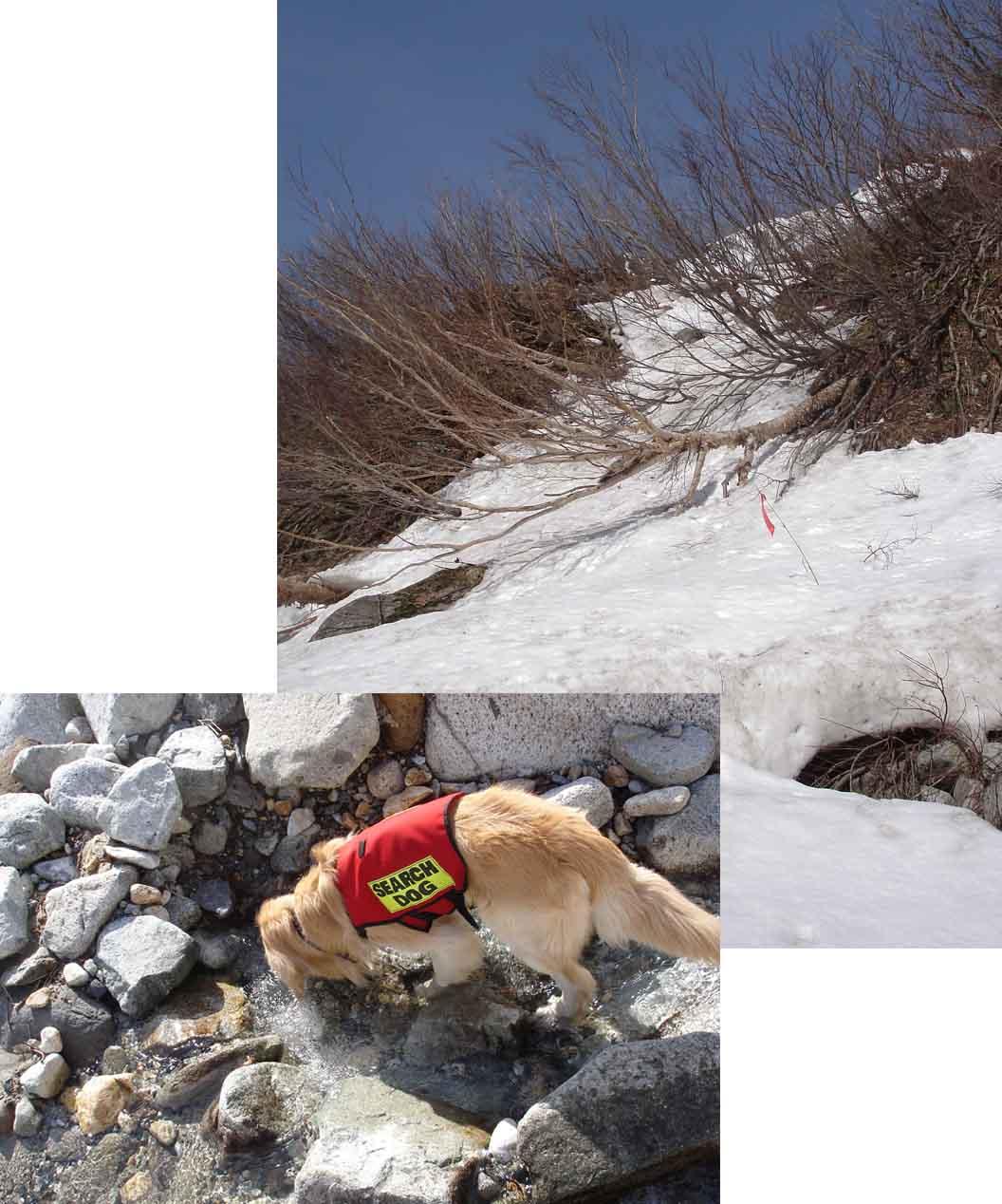 急な雪壁を川床まで下り水を飲むが…