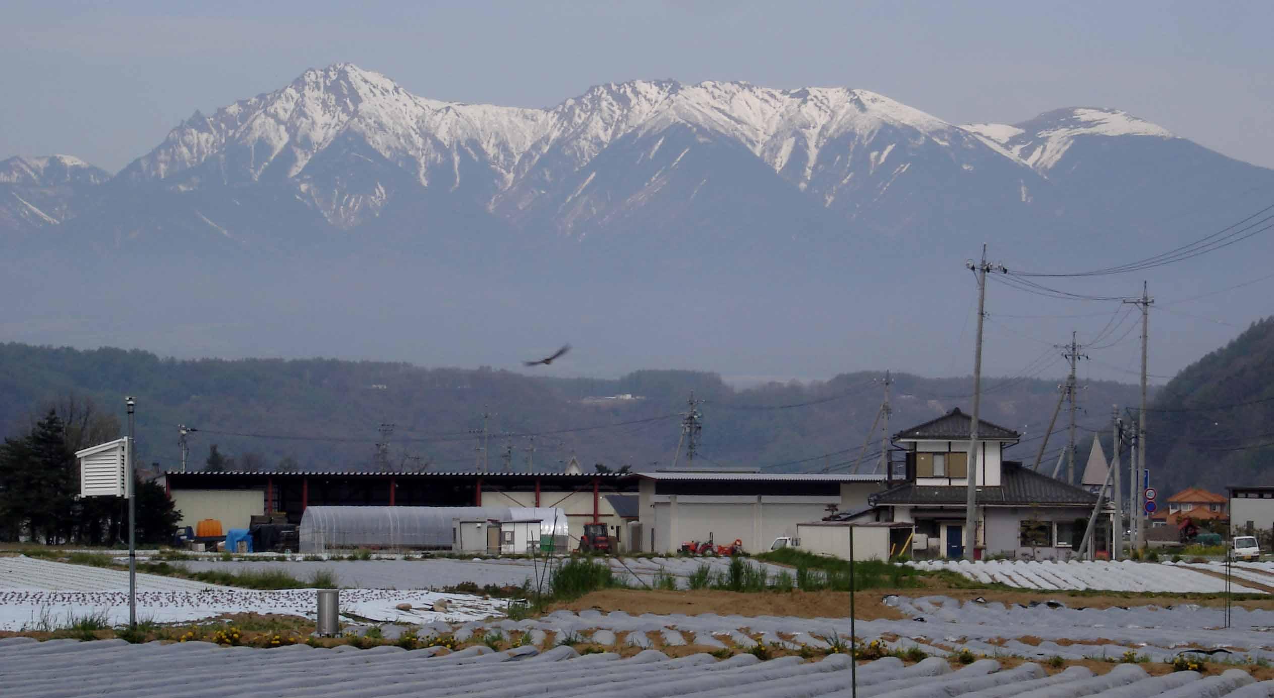 川上村から八ヶ岳(赤岳・横岳・硫黄岳)