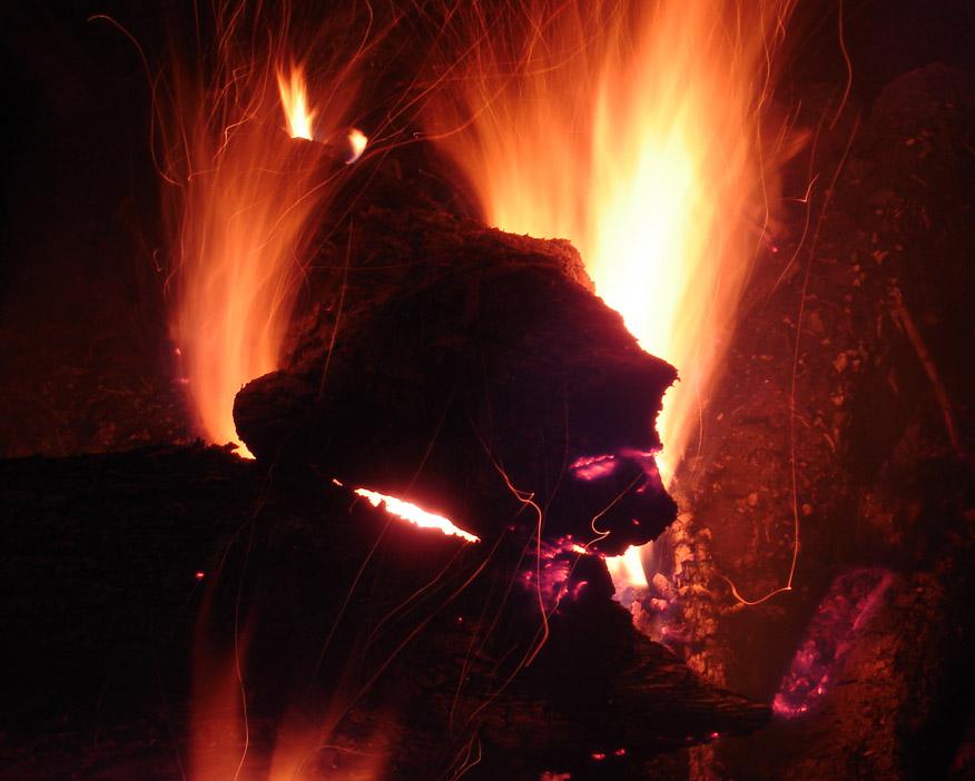 4日夜 焚き火から犬誕生?