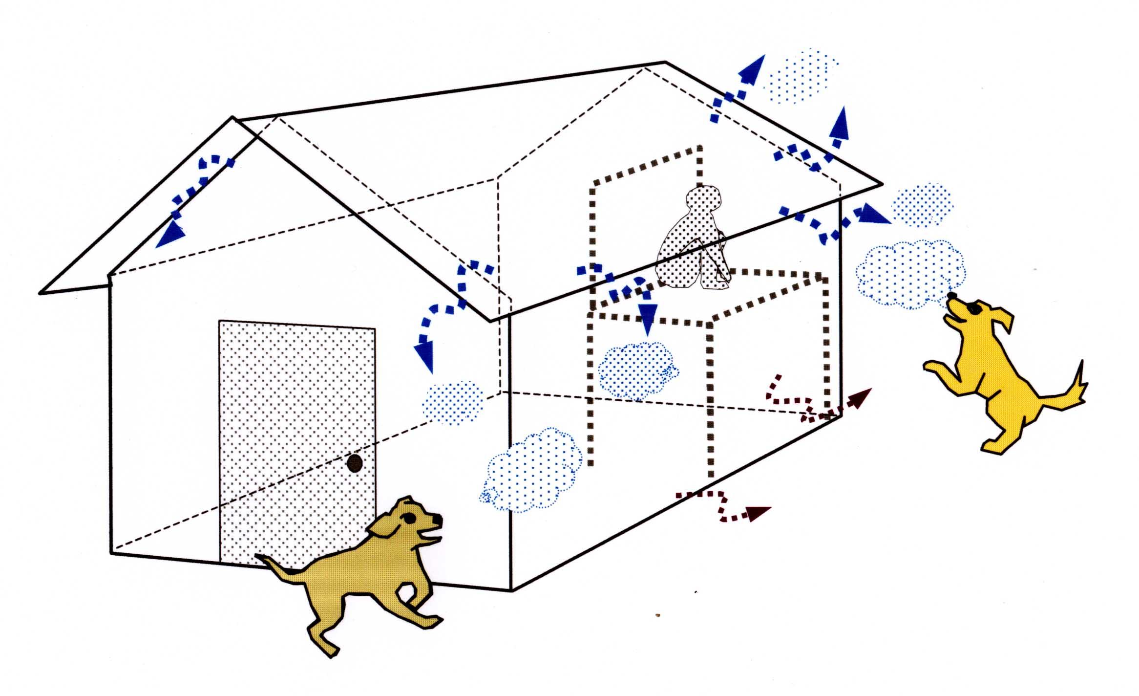 小屋からの臭いイメージ図