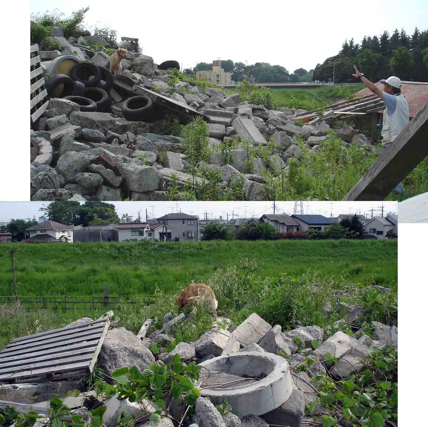 0510 GRM 瓦礫上の捜索