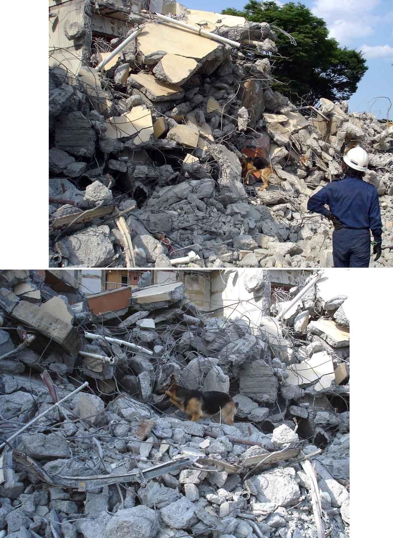 午後の捜索⑧ 瓦礫模様 GSK